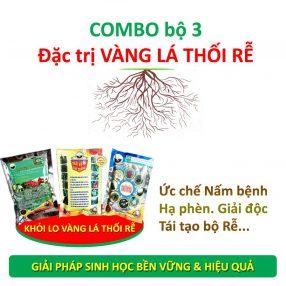 COMBO - Chế phẩm đặc trị Vàng Lá Thối Rễ