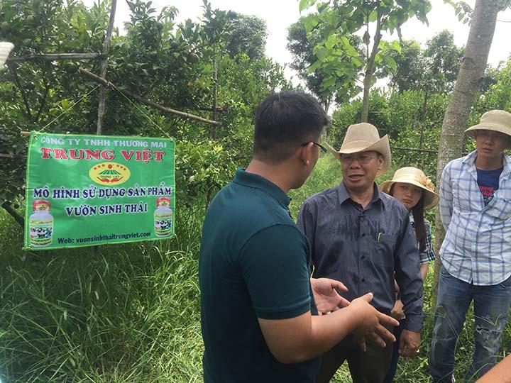 Mô hình canh tác nông nghiệp theo hướng sinh học tại Xuyên Mộc
