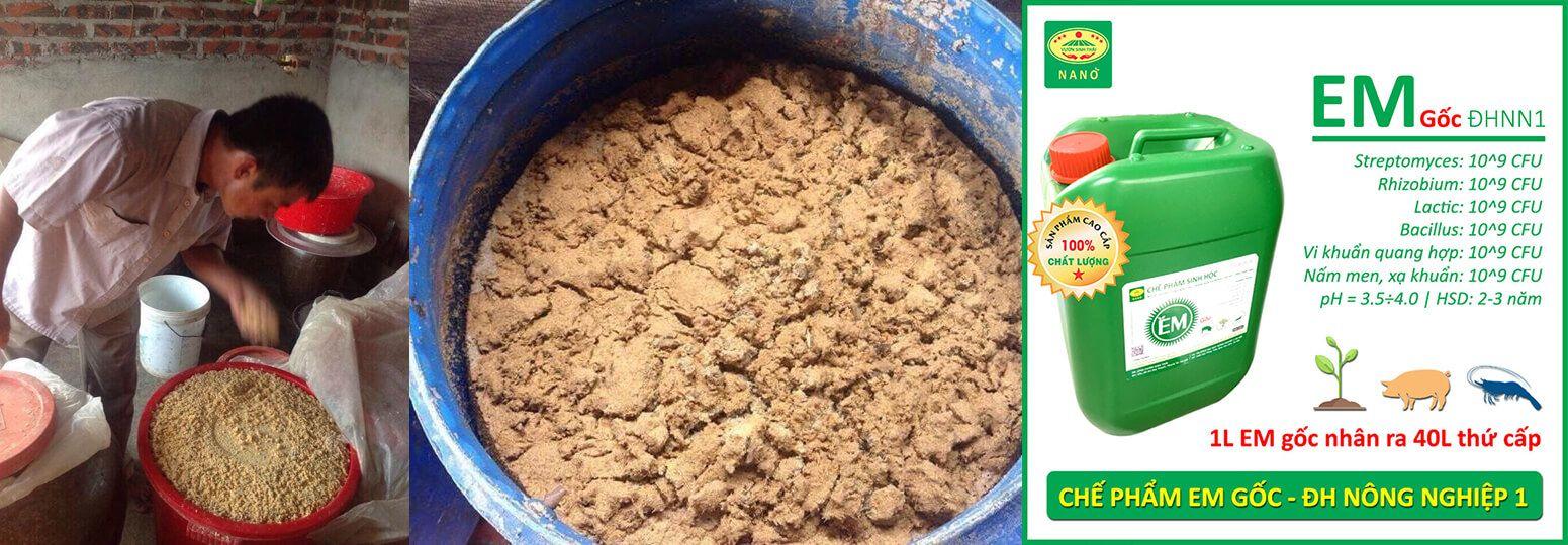 Cách ủ cám ngô, cám gạo làm thức ăn chăn nuôi bằng Chế phẩm EM