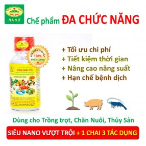 che-pham-vuon-sinh-thai-da-chuc-nang