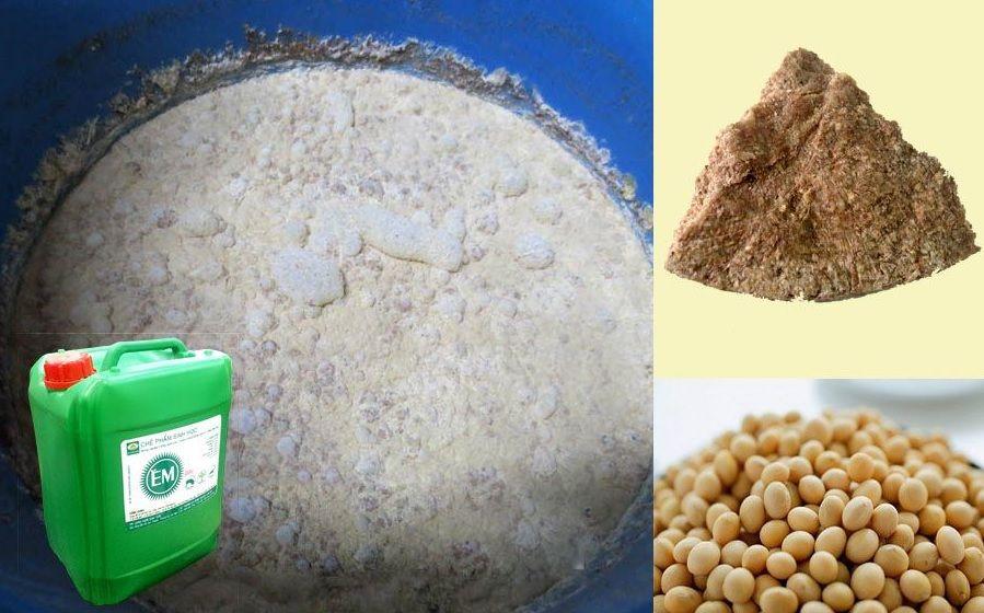 chế phẩm em gốc ủ đỗ tương làm phân bón