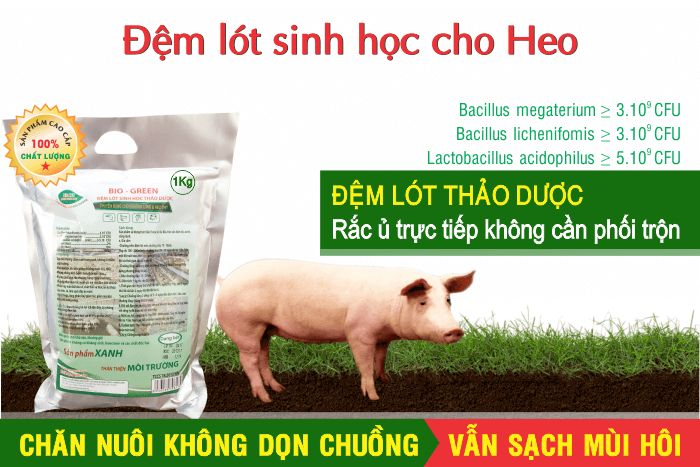 đệm lót sinh học chăn nuôi heo biogreen