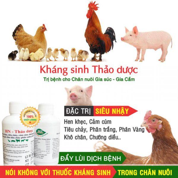 kháng sinh thảo dược đặc trị hen khẹc tiêu chảy phân trắng cho gia súc gia cầm và thú cưng 1