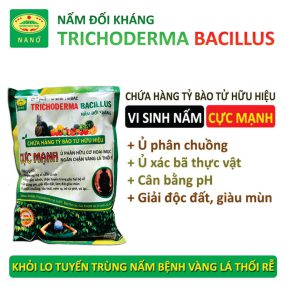 nam doi khang trichoderma TRIBAC (1)