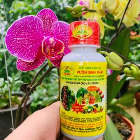 phan bon cho hoa lan hoa hong