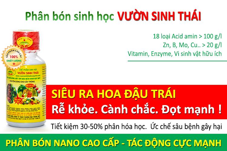 phan_bon_sinh_hoc_sieu_ra_hoa_dau_trai