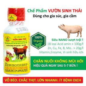 thuc an chan nuoi vuon sinh thai (1)