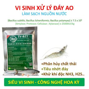 vi-sinh-xy-ly-day-ao-nuoi-tom-ca-2