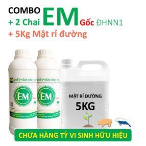 combo-che-pham-EM-goc-va-Mat-ri-duong