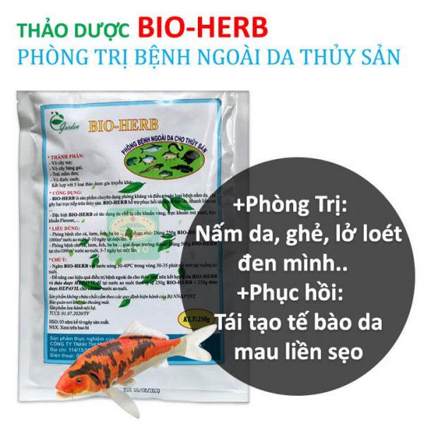 thao-duoc-bio-herb-tri-benh-nam-da-ghe-lo-loet-ca-koi-luon-ech