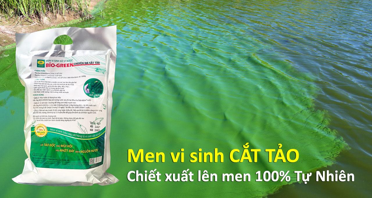 MEN-VI-SINH-CAT-TAO-LAM