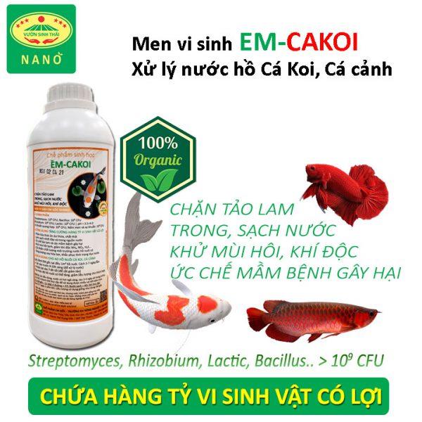 men-vi-sinh-xu-ly-nuoc-ho-ca-ko-ca-canh